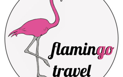 A few words from Flamingo