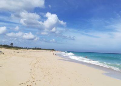 plaża w tarara